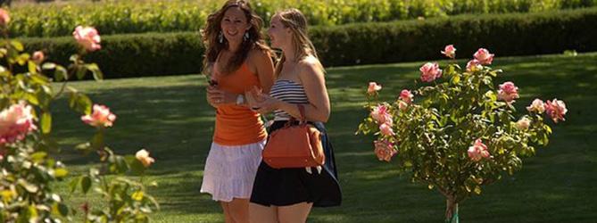 Friends Wine Tour - Santa Barbara Limo Bus